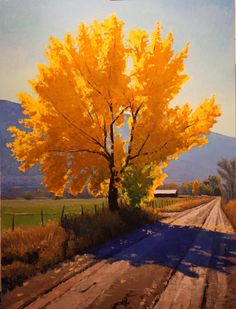 Douglas Aagard- is a Western Landscape Artist, beautiful, oil on canvas paintings. He has his art hanging in Art Galleries in Utah, Arizona, Wyoming, Colorado and more...