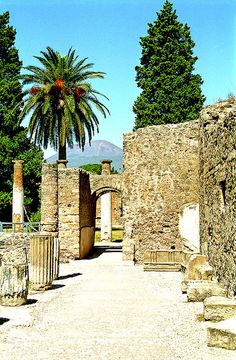 The walls of Pompeii. You can see Mt. Vesuvius in the background.  www.facebook.com/loveswish