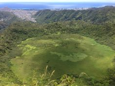 If you want to escape the city life, head to the hills (or mountains, in this case). If you're up to the challenge, Ka'au Crater is a lush, forest hike that traverses around an extinct volcano rim.