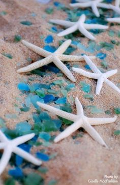 Love this! Need to find sea glass & get more starfish! Wedding Starfish used for Beach Wedding