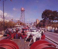 Av. Libertador Altura de Cauchos General 1982,  hoy esta el C/C sambil