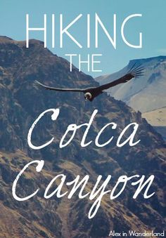 When I arrived in Arequipa, Peru with my eye on the Colca Canyon, I knew I couldn't just sign up for a group tour and spend another few days having my hand held. I was going to hike the Colca Canyon independently.
