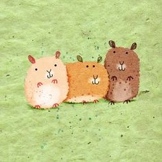 hamsters : )