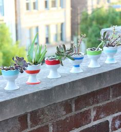 Succulent Succulents | 20 Dorm Room Decor DIYs