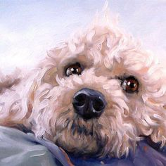 Bichon Frise by puci from puciPetPortraits http://www.darlenepucilloart.com/pet-portraits.html https://www.etsy.com/shop/puciPetPortraits