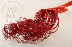 Sparkle Curly Ting Red - WholesaleFlowersAndSupplies.com