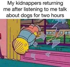 Jeep Humor, Dog Humor, Troll Meme, Chapter 55, Siouxsie & The Banshees, Christian Memes, Skyrim, Animal Memes, Cat Memes