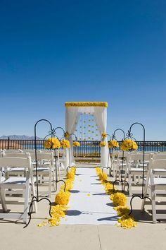 Yellows always look great against a deep blue desert sky.