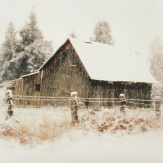 barn during snow fall.