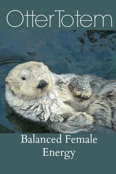 Otter As Your Birth Totem