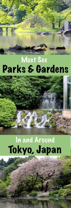 Must See Parks and Gardens in and Around Tokyo, Japan | Footsteps of a Dreamer