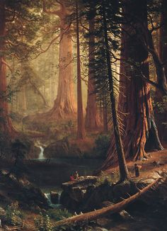jaded-mandarin: Albert Bierstadt. Giant Redwood Trees of California, 1874. #poler #polerstuff #campvibes