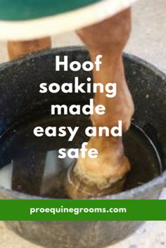 Hoof soaking made easy for your horse!  http://www.proequinegrooms.com/tips/legs-and-hooves/soaking-your-horse-s-hooves/