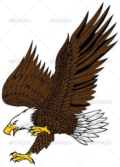 Buy bald eagle attack by namistudio on GraphicRiver. bald eagle attack with details(open with or above, CorelDraw) Bald Eagle Images, Eagle Pictures, Adler Silhouette, Antler Drawing, American Flag Drawing, Alpaca Drawing, Types Of Eagles, Eagle Drawing, Eagle Painting