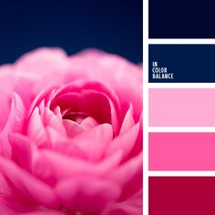 colors | color combinations | blues and pinks