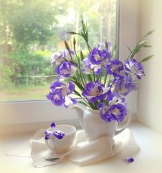 Pretty purple and white - still life - Purple & white flower arrangement by window.