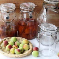 この時期は「梅しごと」といって、昔からその年に収穫された梅を使い、梅酒や梅シロップ、梅干し、梅ジャムなどが作られてきました。最近では、市販品が多くなりましたが、ひと昔前までは各家庭で当たり前のように作られていたのだとか。 Japanese Food, Mason Jars, Tasty, Cooking, Kitchen, Japanese Dishes, Mason Jar, Brewing, Solar Eclipse