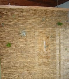 using bamboo curtains as room dividers
