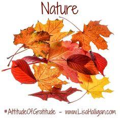Yesterday's post for the #attitudeofgratitude challenge http://ift.tt/2fdQvdL