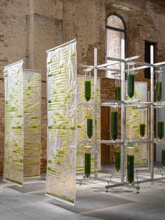 Bit.Bio.Bot exhibition shows how algae can be used as air purifiers and protein source. Green Technology, Glass Printing, Crystal Glassware, Venice Biennale, Article Design, Design Strategy, Brickwork, Protein Sources, Garden Structures