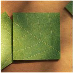 Green Leaf Sticky Note $4.95