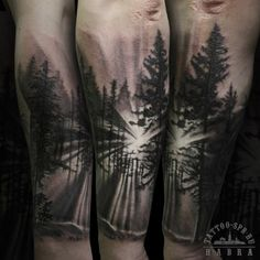 104 Best Tattoos Images Forest Tattoos Tattoo Forearm Coolest Tattoo