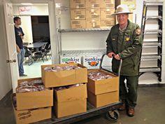 National Park Service donates 500 lbs. of ground venison to National Park Service donates 500 lbs. of ground venison to DCCKDCCK