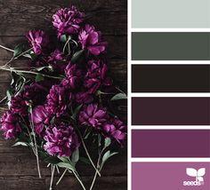 Flora Palette 1