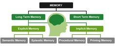 Memory is the most astonishing phenomenon in the world. It is the process by which information is stored, retrieved and encoded. Encoding lets information that is from the outer world to arrive at our senses in the forms of physical … Continue reading → Episodic Memory, Short Term Memory, Continue Reading, Physics, Memories, Let It Be, Epilepsy, Memoirs