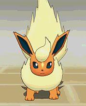All the Eeveelutions Flamara Pokemon Gif, Pokemon Movies, Pokemon Eevee Evolutions, Cute Pokemon Wallpaper, First Pokemon, Pokemon Pictures, Anime Manga, Pikachu, Amaterasu
