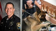 Figo, the K9 partner of Bardstown, Kentucky police officer Jason Ellis, 33, placed his paw on the casket of his fallen comrade in a wrenching final goodbye. Police believe drug enforcement officer Ellis, a husband and father of two, was ambushed May 25 at a highway exit ramp where he was killed by multiple shot gun blasts in an early morning planned attack.