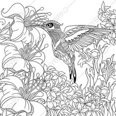 Hummingbird and Hibiscus Flowers Coloring by ColoringPageExpress
