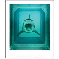 Large poster featuring Damien Hirst's 'The Physical Impossbility of Death in the Mind of Someone Living.'