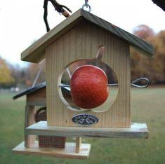 Cold-Weather Birdhouse Ideas from Belgium Via Gardenista
