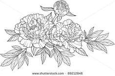 chrysanthemum and peonies sketches - חיפוש ב-Google
