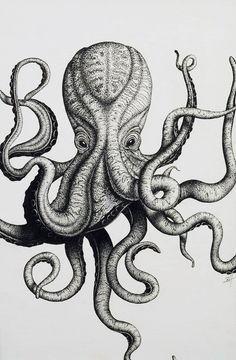 octopus sketch style - Buscar con Google
