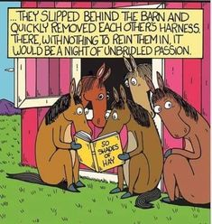 someone stole my idea! Horse Cartoon, Classic Tractor, Horse Quotes, Tumblr, Popular Memes, Funny Pictures, Passion, Comics, Fictional Characters