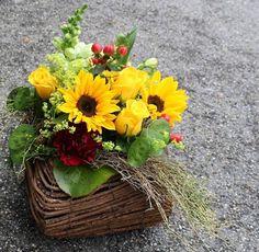 LesFleurs.ch (@lesfleursch) | Twitter Grapevine Wreath, Grape Vines, Wreaths, Twitter, Plants, Home Decor, Florists, Planting Flowers, Bouquet Of Flowers