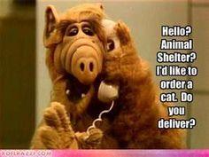 ALF- I still have my talking Alf doll
