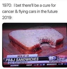 "I bet there'll be a cure for cancer & flying cars in the future "" PB&J SANDWICHES - iFunny :) All Meme, Stupid Funny Memes, Funny Relatable Memes, Haha Funny, Funny Pins, Funny Cute, Funny Texts, Funny Stuff, Funny Humor"
