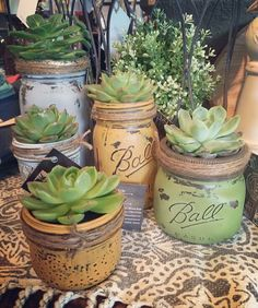 Home Decor Ideas with Mason Jars Chalk painted Ball jars as succulent house plant containers.Chalk painted Ball jars as succulent house plant containers. Mason Jar Succulents, Paper Succulents, Planting Succulents, Succulent Planters, Indoor Succulents, Hanging Planters, Succulent Decorations, Indoor Herbs, Cacti Garden