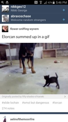 The REAL question is which one is Lorcan and which is Elide>>>> Elide = . Lorcan = .