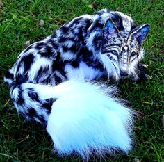 Posable Snow Leopard Wolf by Wood-Splitter-Lee.deviantart.com