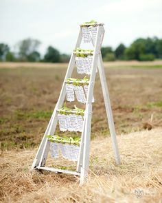 ladder with escort cards hanging on it Wedding Table Assignments, Wedding Seating, Rustic Wedding, Our Wedding, Dream Wedding, Trendy Wedding, Wedding Blog, Wedding Stuff, Before Wedding