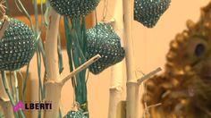 Alberti Goito MN Christmas 2014 youtube