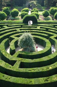 The Maze at Chatsworth House, Derbyshire, UK Seat of the Dukes of Devonshire