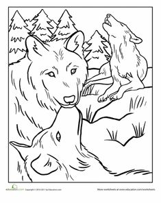 Worksheets: Wolf Pack Coloring Page