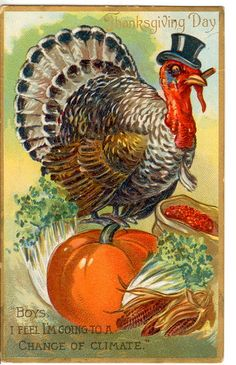 Shop Vintage Thanksgiving Day Turkey Postcard created by Vintage_Gifts. Personalize it with photos & text or purchase as is! Thanksgiving Greeting Cards, Thanksgiving Pictures, Thanksgiving Blessings, Vintage Thanksgiving, Thanksgiving Crafts, Vintage Holiday, Vintage Halloween, Happy Thanksgiving, Thanksgiving Drawings