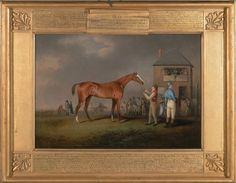 "Henry Bernard Chalon ""Quiz"" racehorse"