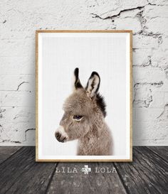 Donkey Print, Baby Animal Nursery Wall Art Decor, Printable Poster, Modern Minimalist Kids and Babies Room, Baby Shower Gift, Colour Photo by LILAxLOLA on Etsy https://www.etsy.com/listing/470006796/donkey-print-baby-animal-nursery-wall